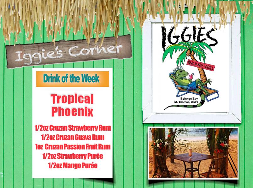 Iggies-Tropical-Phoenix